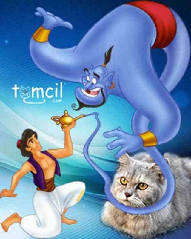 tomcil.com storytelling for children aladdin geenie