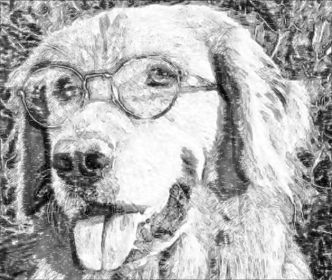 Photo to Pencil Sketch Converter - Turn your photos into pencil sketches online for free