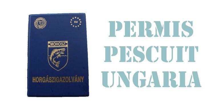 Tot ce trebuie să știi despre permisul de pescuit în Ungaria