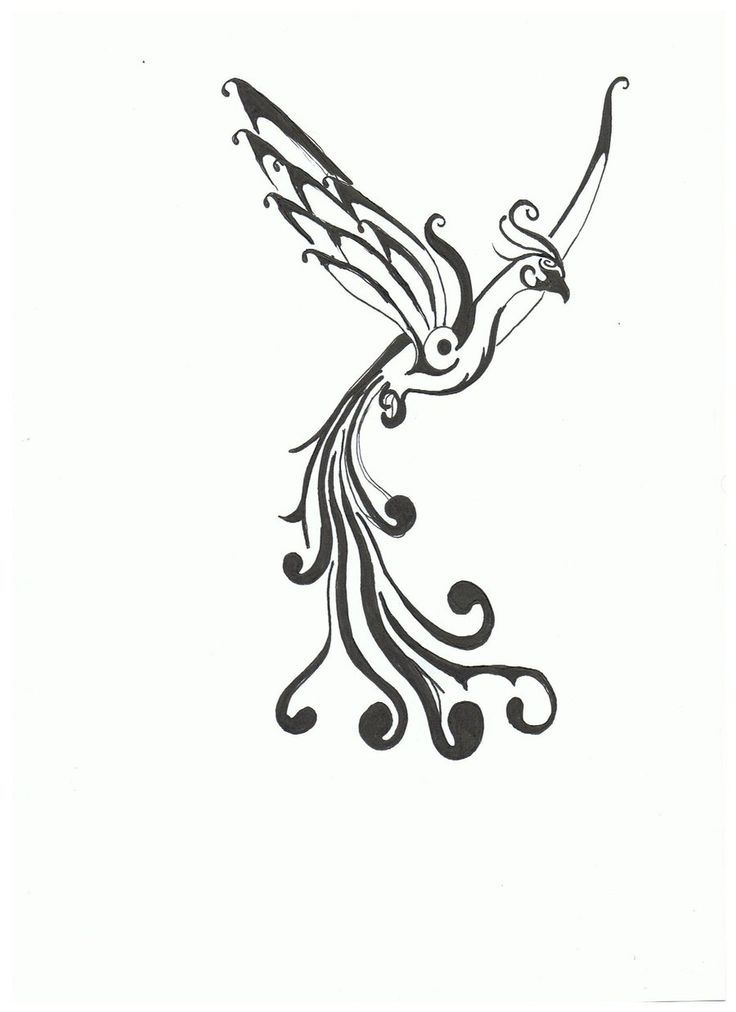 23 best simple phoenix tattoo designs images on pinterest phoenix tattoo design tattoo - Tatouage trait fin ...