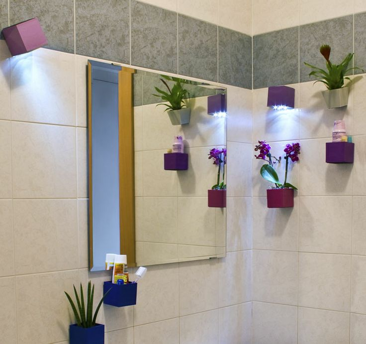 Magnetické květináče v koupelně #kalamitica