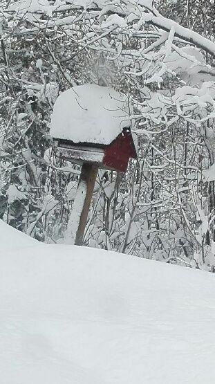 En liten röd låda märkt med siffran 13 i svart text finns där man svänger av i Hirvijärvi mot Pasainen.