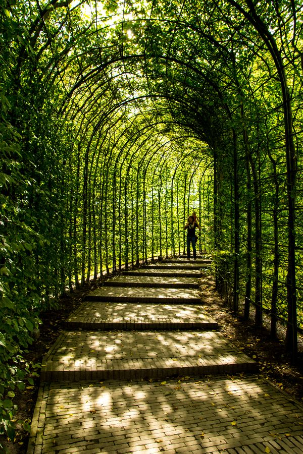 A Walk in the Arches by Carl Thompson, via 500px
