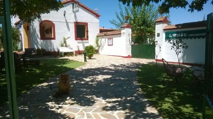 Casa Rural El Pinar, www.elpinar.upps.eu, Ein schönes Haus in einer faszinierenden natürlichen Umgebung, 4 km von Talavera de la Reina entfernt. Der ideale Ort, um sich zu entspannen und viele Aktivitäten zu unternehmen. Verbringen Sie einen Urlaub mit der Familie oder Freunden mit allem Komfort, den wir Ihnen bieten können.