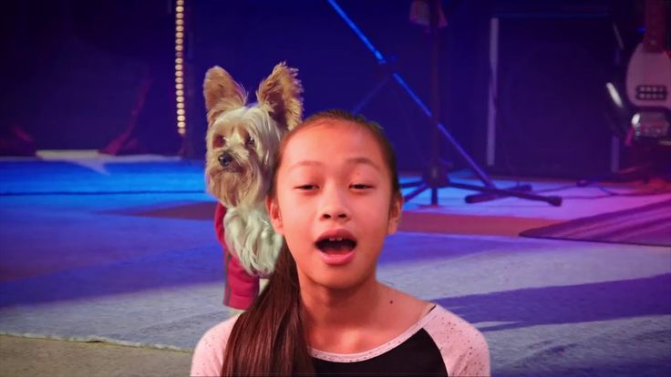 Film Review: Pup Star -  Better2Gether by KIDS FIRST! Film Critic Jolleen M. #KIDSFIRST! #PupStar2