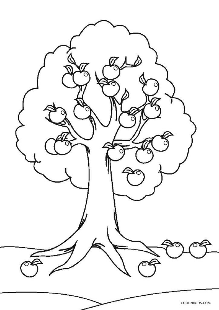 Tree Coloring Pages Fall Coloring Pages Flower Coloring Pages