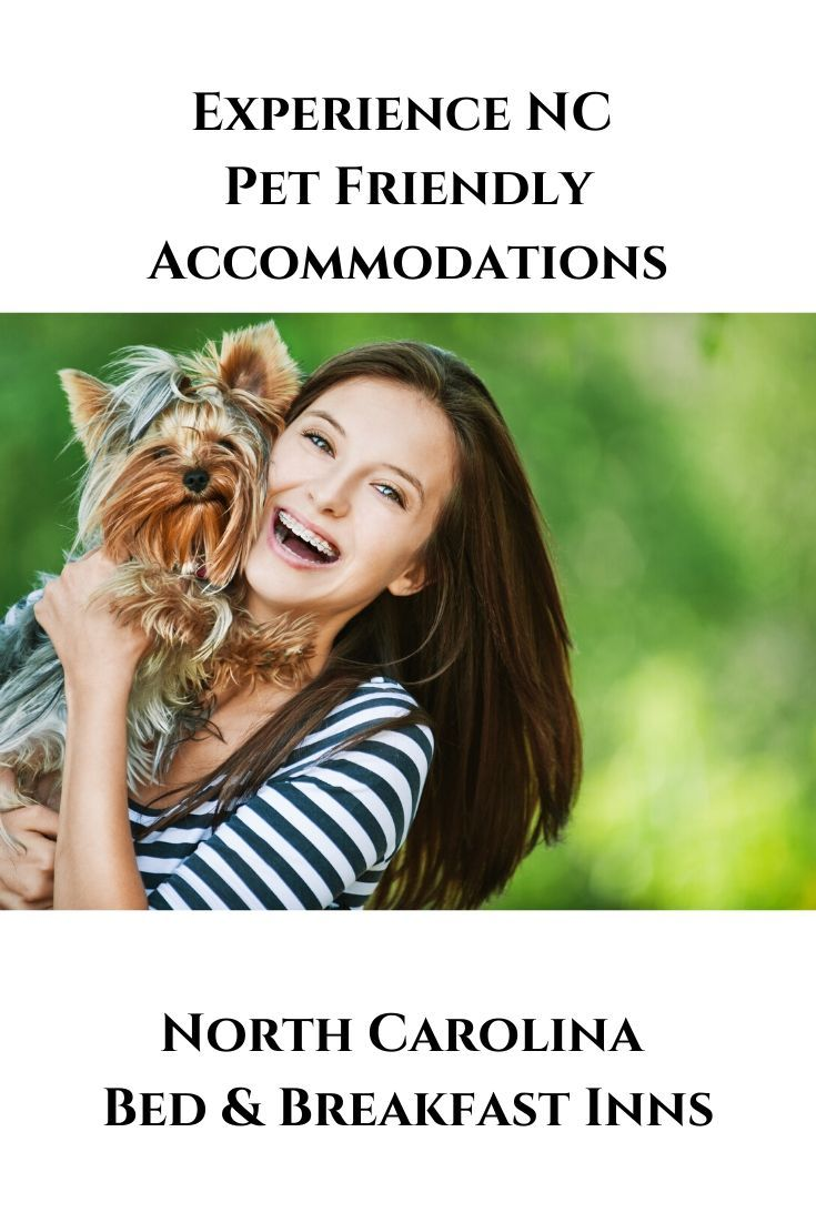 Experience Nc Pet Friendly Accommodations Pet Friendly