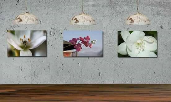 Originele en betaalbare wanddecoratie voor echte kantoorkunst Je bedrijf, kantoor of winkel kan natuurlijk geen lege muren hebben. Dat is niet goed voor de motivatie van je mensen, maar ook niet gezellig voor het bezoek. Heb je al jaren dezelfde canvas hangen? Een goed moment om naar iets nieuws te kijken. Nieuwe foto's online gezet....  http://www.werkaandemuur.nl/index/131/nl/Agnes-Meijer/works/13931