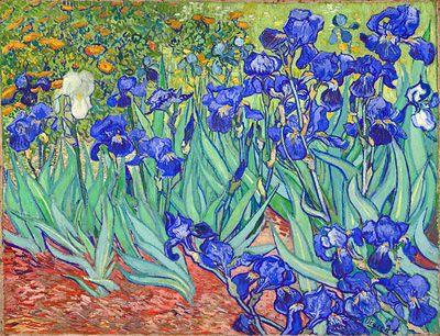 Irises Van Gogh