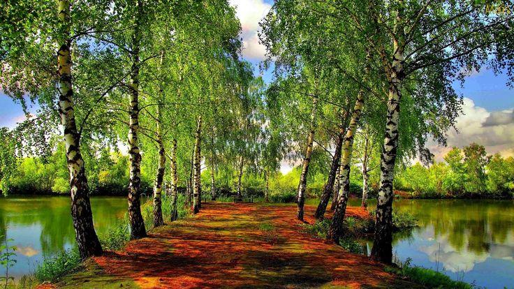 cores do outono 3