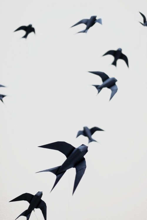 origami swallow by Sipho Mabona