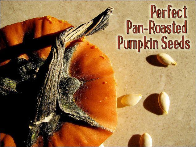 ... Pumpkin Seed Recipes on Pinterest   Roasted pumpkin seeds, Seeds and