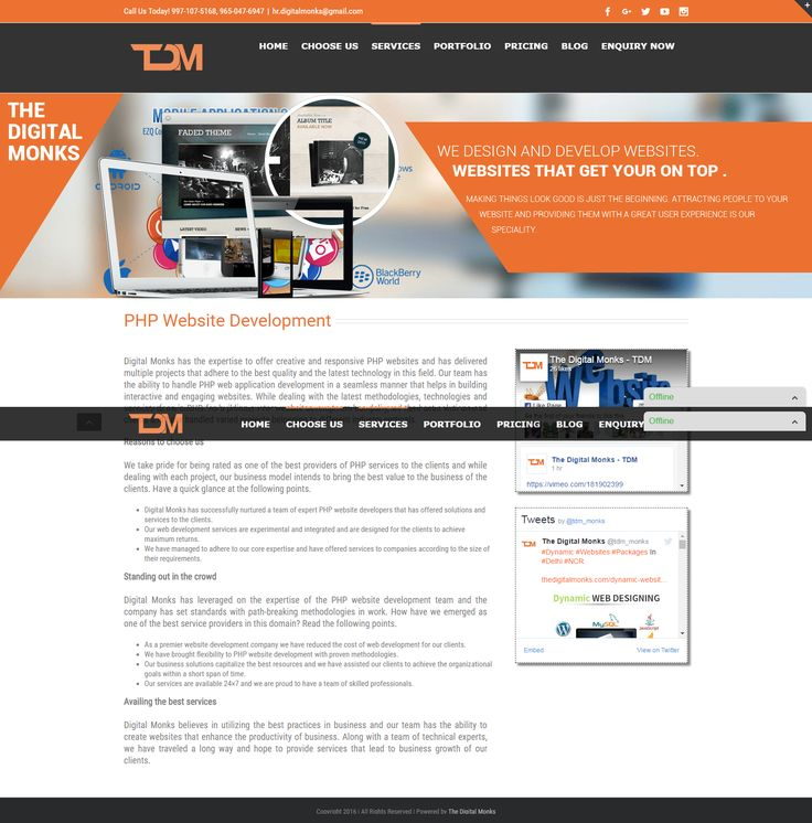 7 best php website development images on pinterest website designs website fandeluxe Image collections