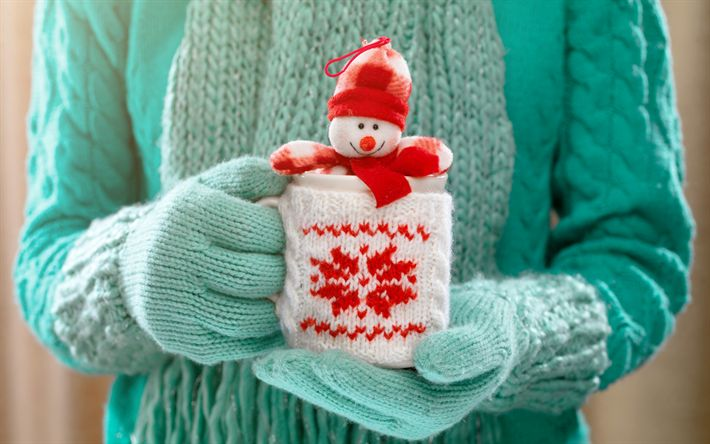 Download wallpapers Christmas, snowman, plush toy, New Year, mug in hand, winter, green sweater