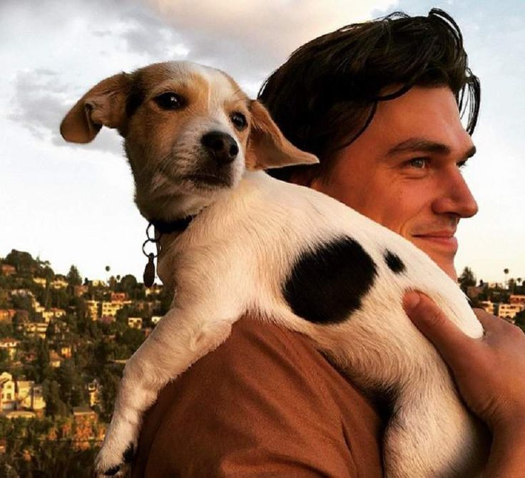 Finn Wittrock goes full on couture wearing his puppy as a shawl