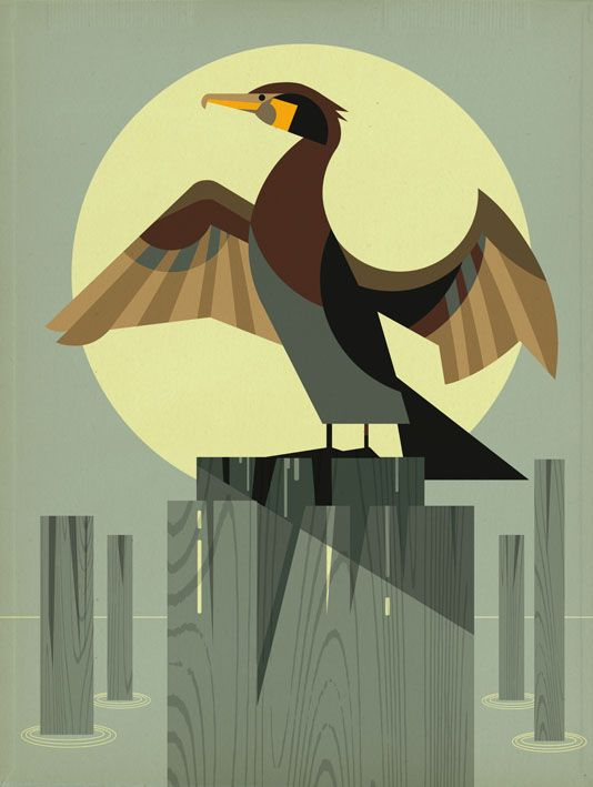 Cormorant by Dieter Braun #illustration #animal #bird #iconic #icon #cormorant