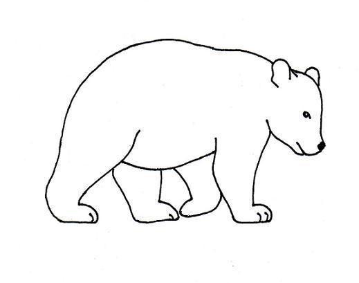 25 best ideas about Drawings Of Bears on Pinterest  Bear drawing