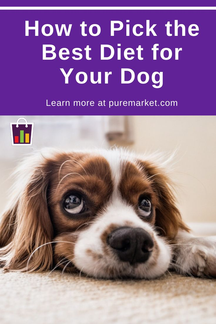 How can i pick the best diet for my dog pure market
