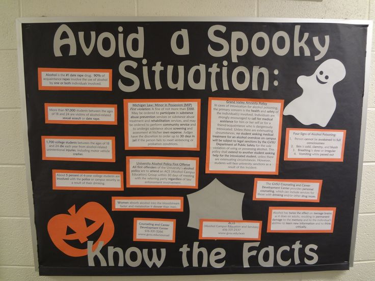 Alcohol facts for October Bulletin Board
