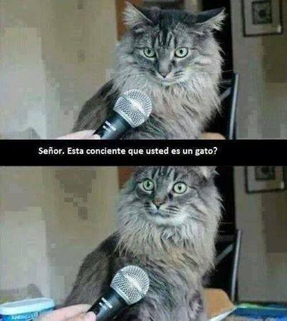 Tener buen humor #humor #chistes #risa #memes