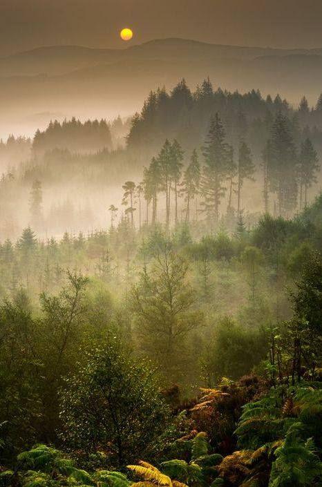 Dukes Pass in Trossachs, Scotland