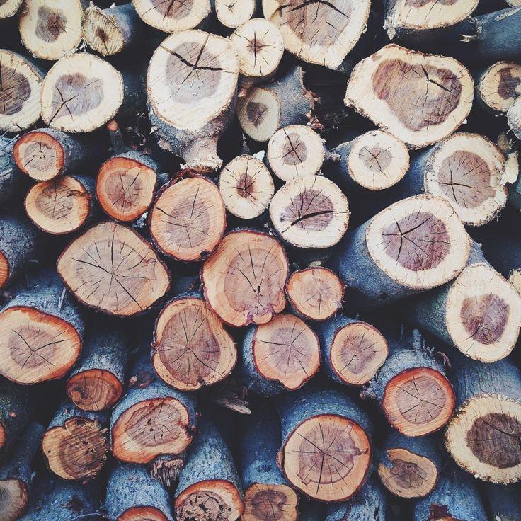 Wood logs | VSCO | D. Shun-Luoi Fong