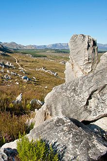 Rugged and ruled by the elements, the stunning Hottentots Holland Nature Reserve with spectacular views over False Bay and the Cape Winelands is a wonderland for adventure-seekers...