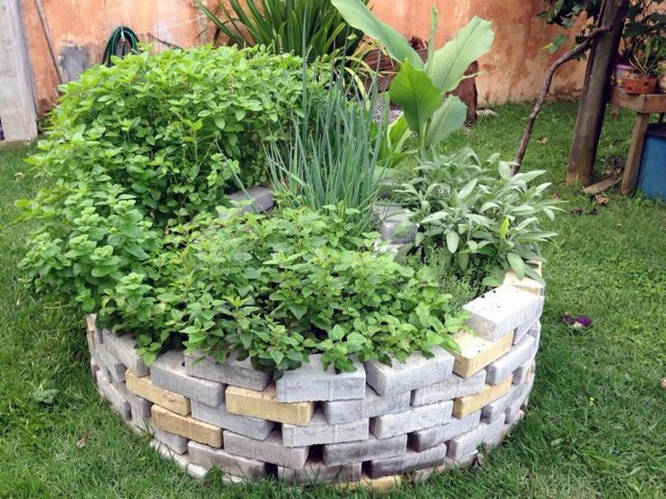 How to plant spiral herbal gardens correctly - list with ...