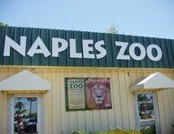 The Beautiful Sites and Fun Things To Do in Naples, Florida - Visit the Naples Zoo - You can learn more about this popular destination by visiting our site.