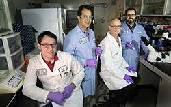 "Gene editing is revolutionizing the bioscience research landscape and holds great promise for ""deleting"" diseases from human bodies. Sandia National Laboratories is working to make this technology safer and to ensure that one day it can be delivered into humans without triggering adverse immune s..."