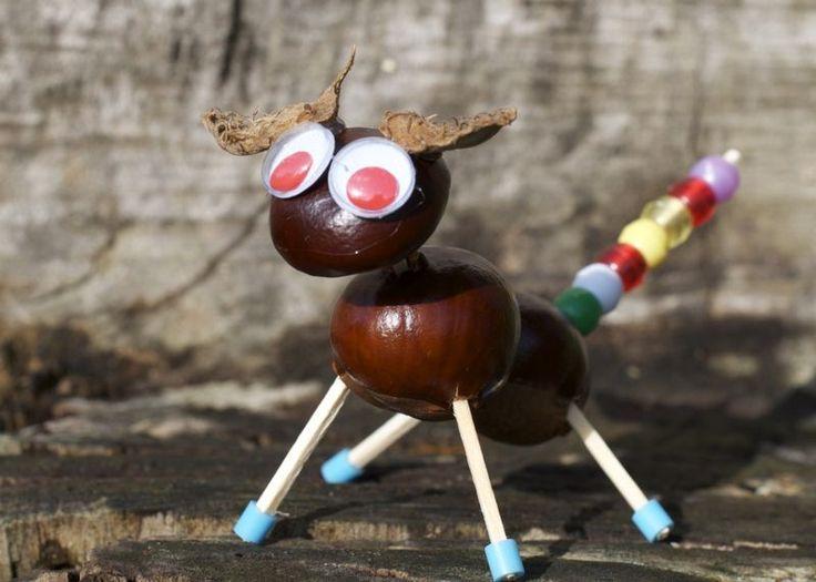 Horse chestnut creatures