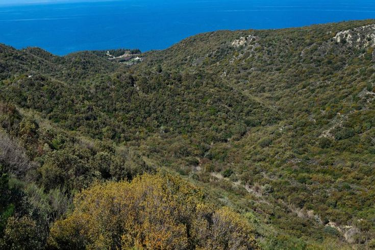 2015: A view over Shrapnel Gully towards the Turkish coast