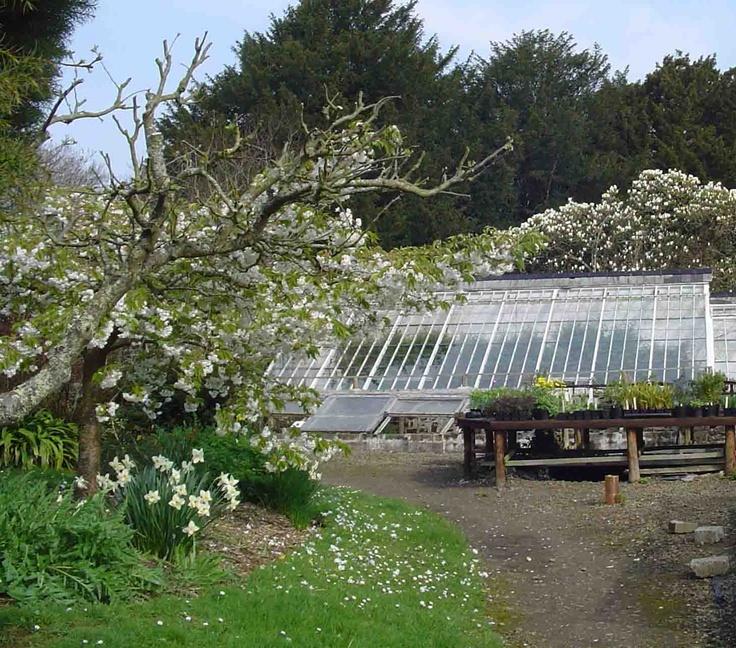 Clovelly Court Gardens, devon uk