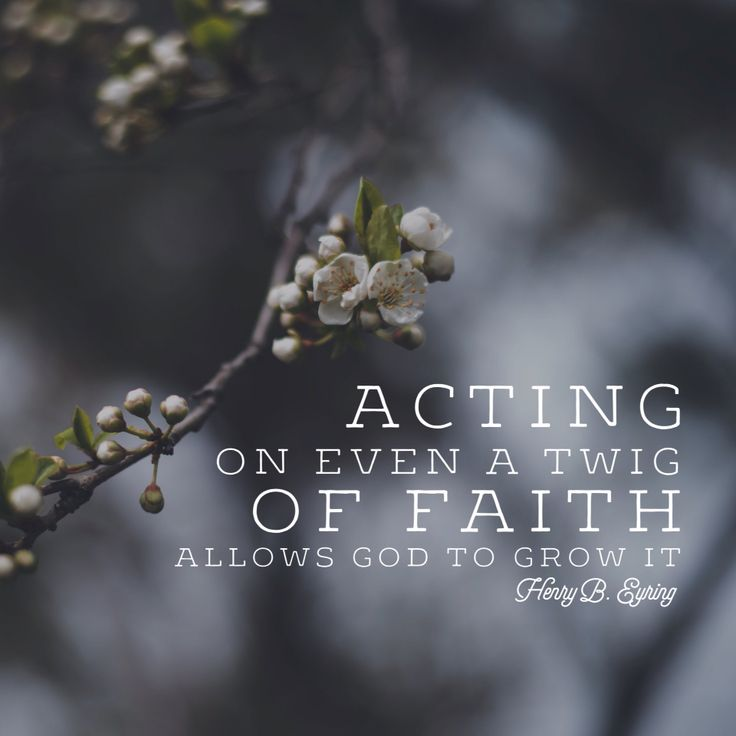 """""""Acting on even a twig of faith allows God to grow it."""" - Henry B. Eyring LDS Quotes #lds #mormon #christian"""