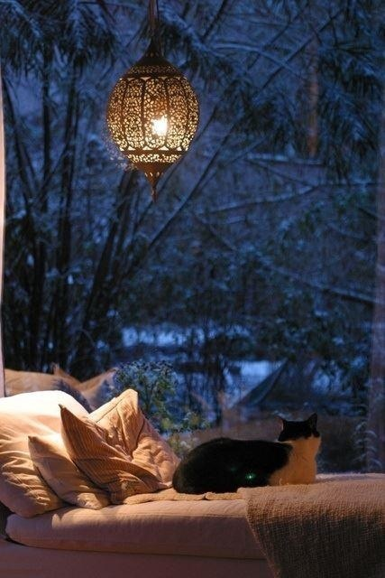 A #winter #sleep - blue and brown