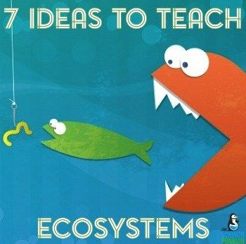 7 Ideas to Teach Ecosystems http://thesciencepenguin.com/2015/01/7-ideas-teach-ecosystems-food-webs.html