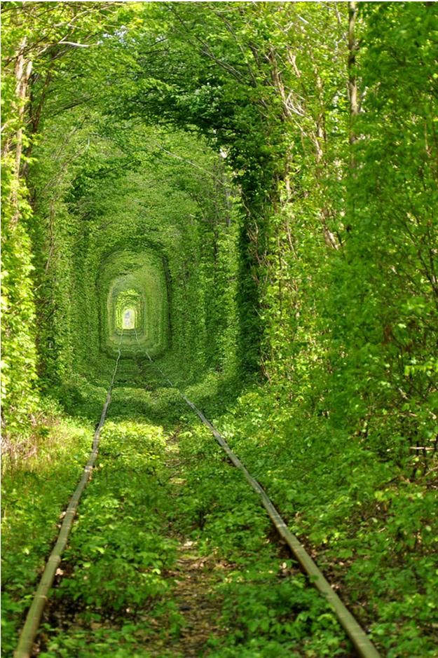 Lets go here! a train tunnel somewhere in Ukraine.....I want one...with out the train part....in my dream garden