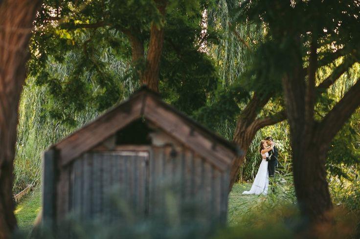 Canberra,Canberra Photography,Canberra Wedding Photographer,Canberra Wedding Photography,Grazing,Grazing at Gundaroo,Gundaroo,Hay Field,Keepsake Photography by Daniel Keeffe,Wedding,