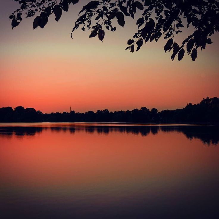 #Lake in #Duisburg  #NRW #Germany #sunset #sunrise #sun #sky #skyporn #instasky #epicsky #skyback #insta_sky_lovers #weather #horizon #nature #instadaily #iger #igers #picoftheday #bestoftheday #photooftheday #instagood #colorful #amazing #beautiful #shootingstheglobe #wanderlust #instatravel by nico_weinberger
