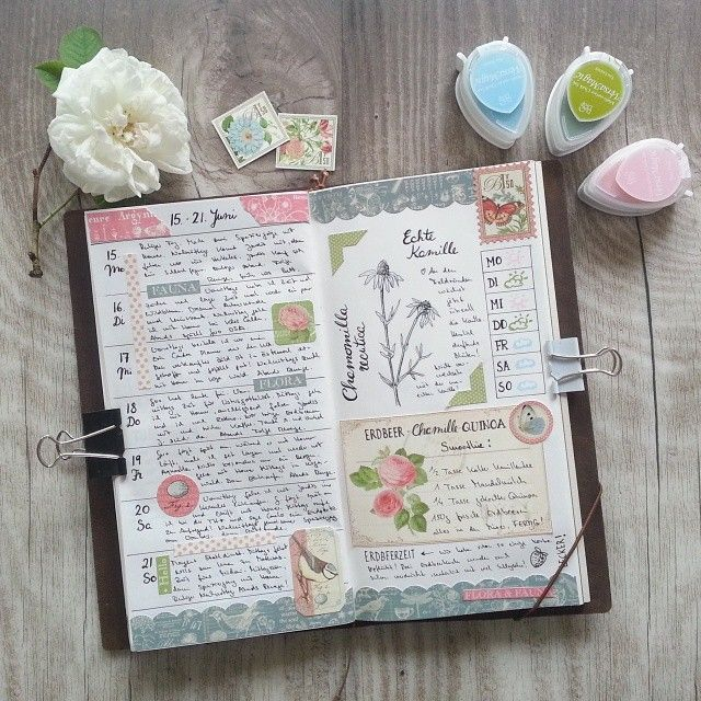 week 25 in my #midoritravelersnotebook #travelersnotebook #midori #planneraddict #planner #plannercommunity #plannerlove #journal #artjournal