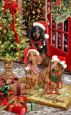"New for 2013! Dachshund Christmas Holiday Cards are 8 1/2"" x 5 1/2"" and come in packages of 12 cards. One design per package. All designs include envelopes, your personal message, and choice of greeting. Select the inside greeting of your choice from the menu below.Add your custom personal message to the Comments box during checkout."