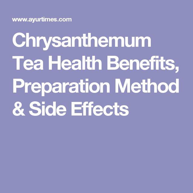Chrysanthemum Tea Health Benefits, Preparation Method & Side Effects