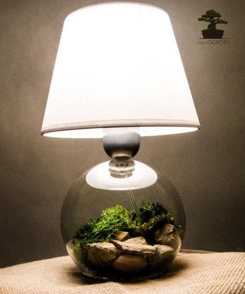 Z okazji przystrajania zielenią wszystkiego co się da, dzisiaj eksperyment ze światłem…lampka plus podkładka drewniana plus dużo porostu i kamieni i jest efekt:) Pozdrawiam. Więcej pomysłów na profilu na facebooku (www.facebook.pl/miniogrodnictwo)