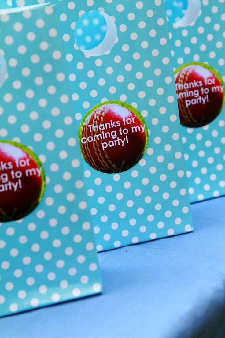 Cricket Party Bags - 6th Birthday Party!