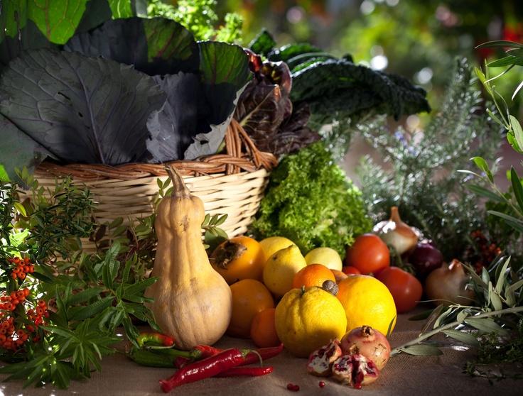 food nature