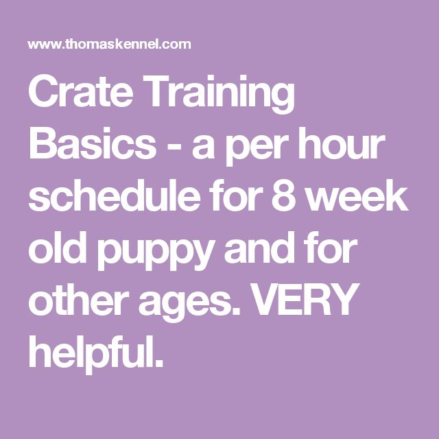 Crate Training Basics -  a per hour schedule for 8 week old puppy and for other ages. VERY helpful.