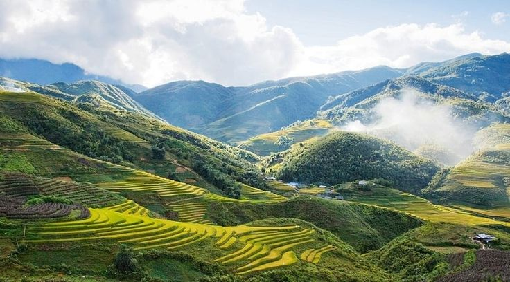 Top Vietnam Sightseeing Attractions -  The verdant rice field countryside encompassing Sapa, bordered by the jagged peaks of the Hoang Lien Mountains.