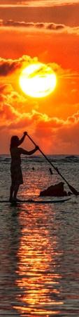 Trey Ratcliff - Hawaii - Oahu - The Paddle Board