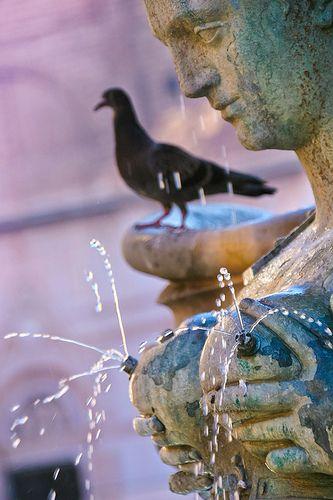 Fontana Di Nettuno, Bologna, - province of Bologna, Emilia Romagna region Italy