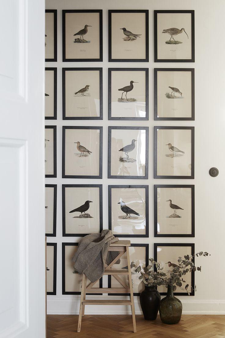 Framed birds. Architecture. Fantastic Frank Real Estate.
